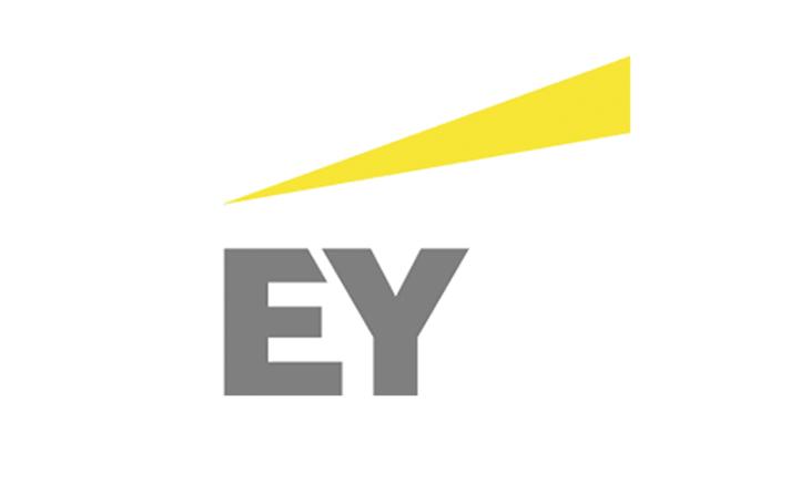 Ernst & Young: Unsere Erfahrung mit Locatee