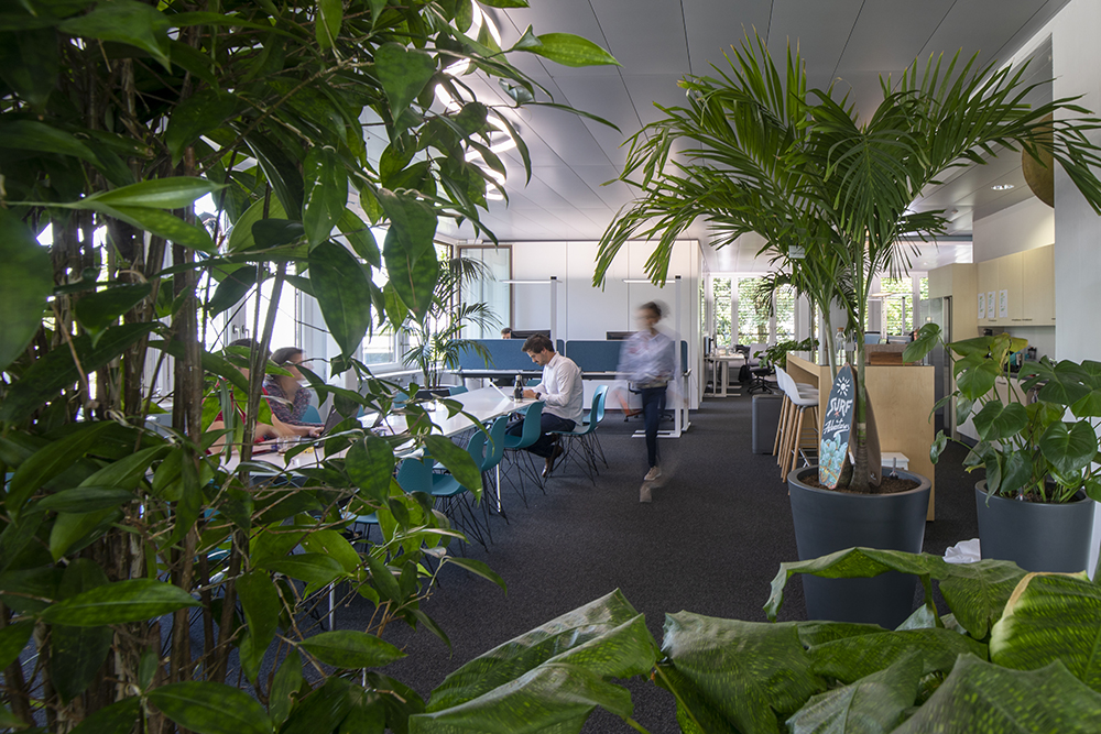 The office of tomorrow will be more experiential